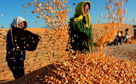 农业部发布《关于切实做好2014年农业农村经济工作的意见》