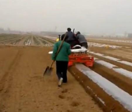 全自动土豆播种机